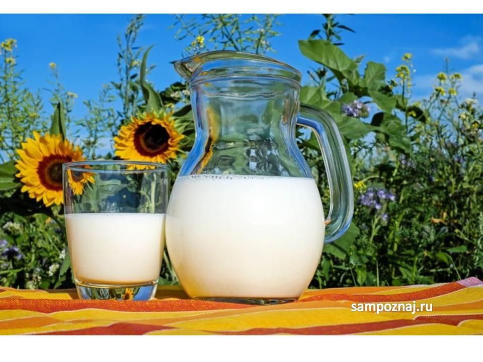 полезно ли пить молоко