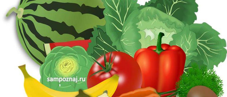 польза овощей и фруктов для организма
